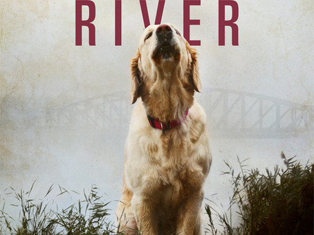January River Cover and Blurb Reveal