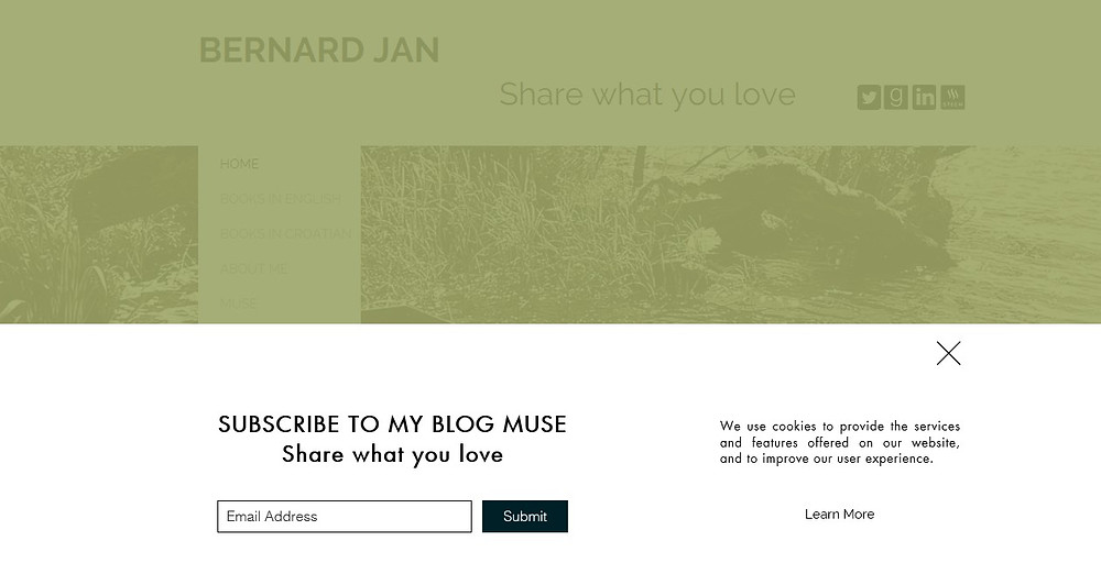 Subscribe to Bernard Jan's blog Muse and read his cookie policy