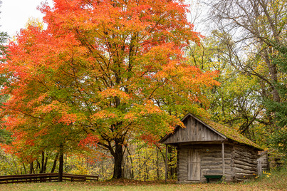 House with a Fall View by Beverly Hawkins