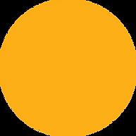 med circle.png
