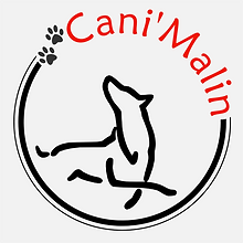 Logo -Cani'Malin- designed by labeuse.ch