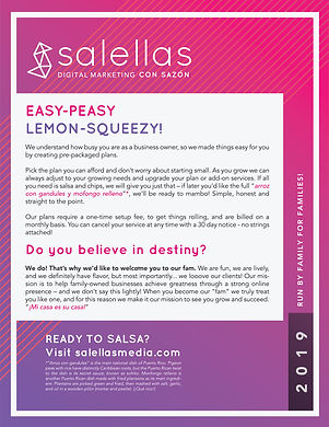 Salellas_Services_Flyer_Front.jpg