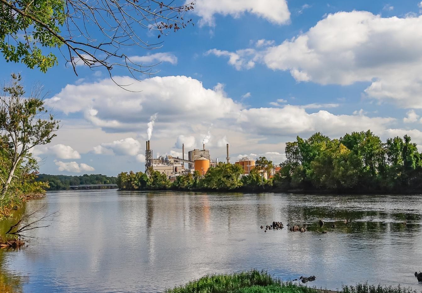 Roanoke Rapids