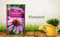 Plantjord