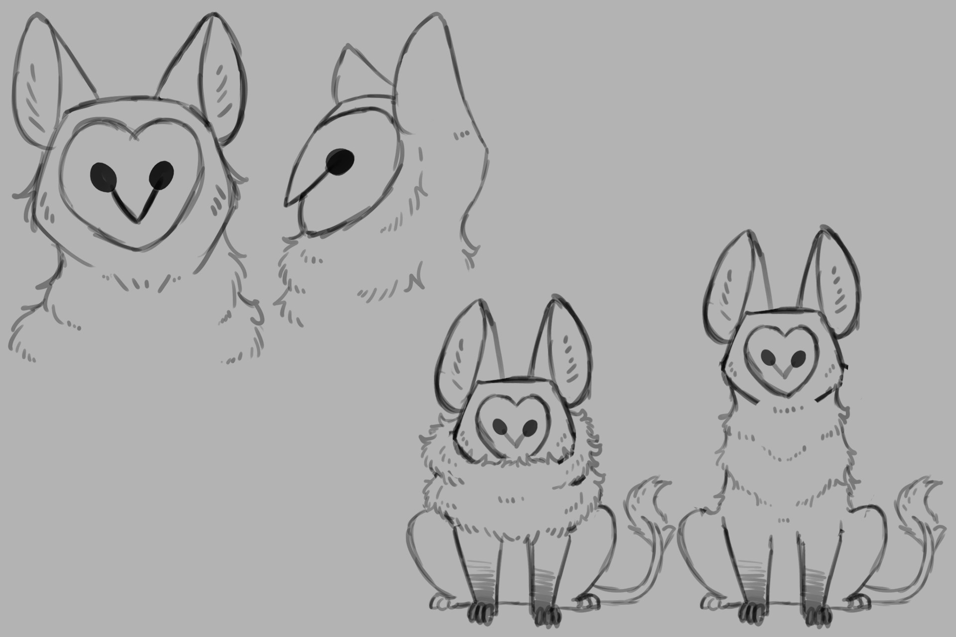 Griffin Design Exploration