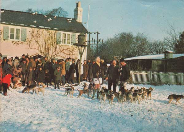 Beagle Meeting c1970s