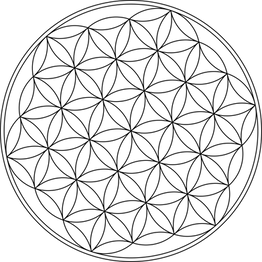carlotheman-Flower-of-Life-Symbol.png