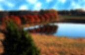 fallpondgreenlevelfarm.jpg
