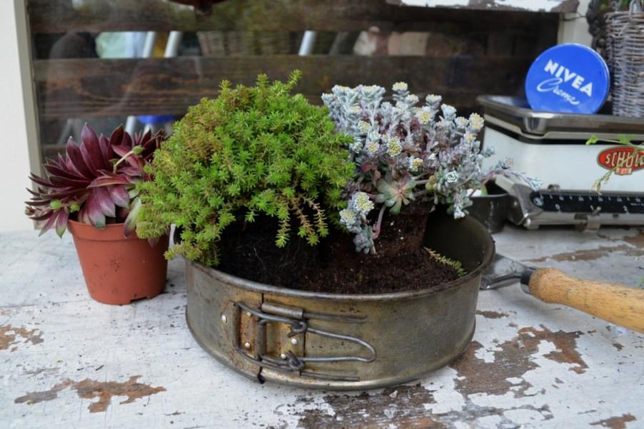 Selbstgemachte Blumendeko im Vintage Stil aus einer Springform