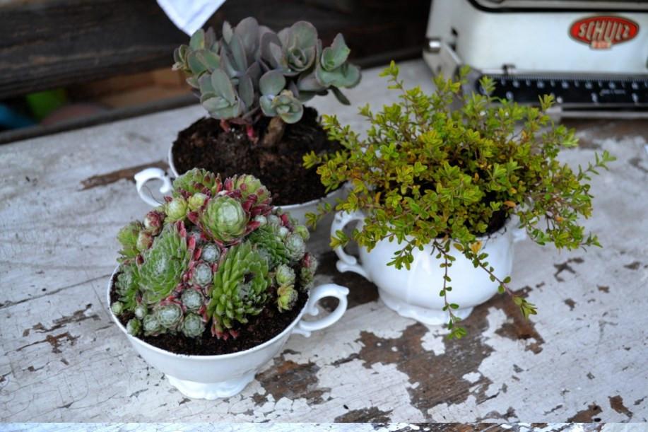 Selbstgemachte Blumendeko im Vintage Stil - Kaffeetasse