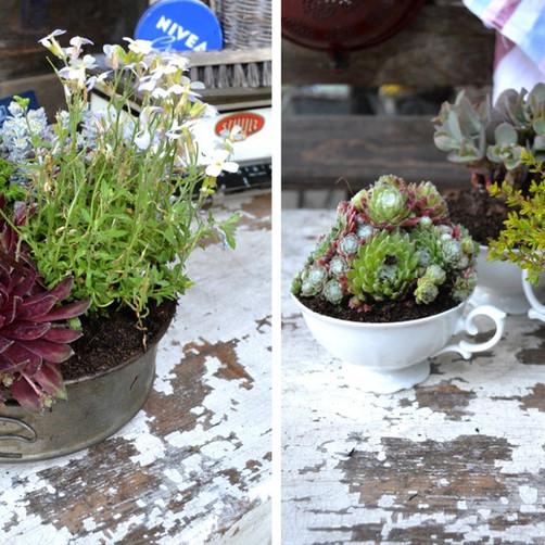 Zwei Ideen für individuelle Blumendeko im Vintage Stil als Teil meiner Gartenecke
