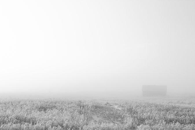 black and white (1 of 3).JPG