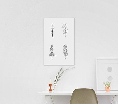 Sketchy Trees
