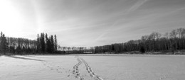IMG_2829-Pano-Pano Mid Day Low Sun on the Beaver Pond.jpg