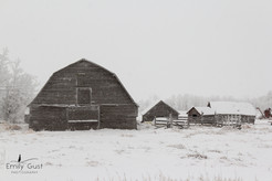 Snowy Barn.jpg