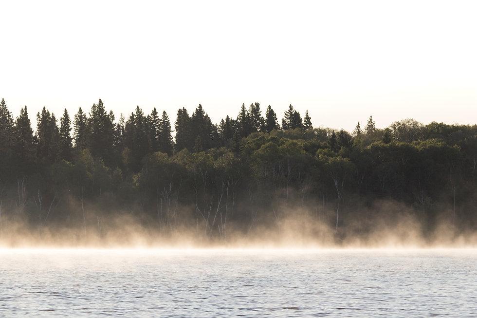 Foggy Lake 2018.jpg