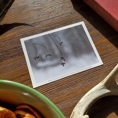 Photo Card Set (4x5.5 postcard)