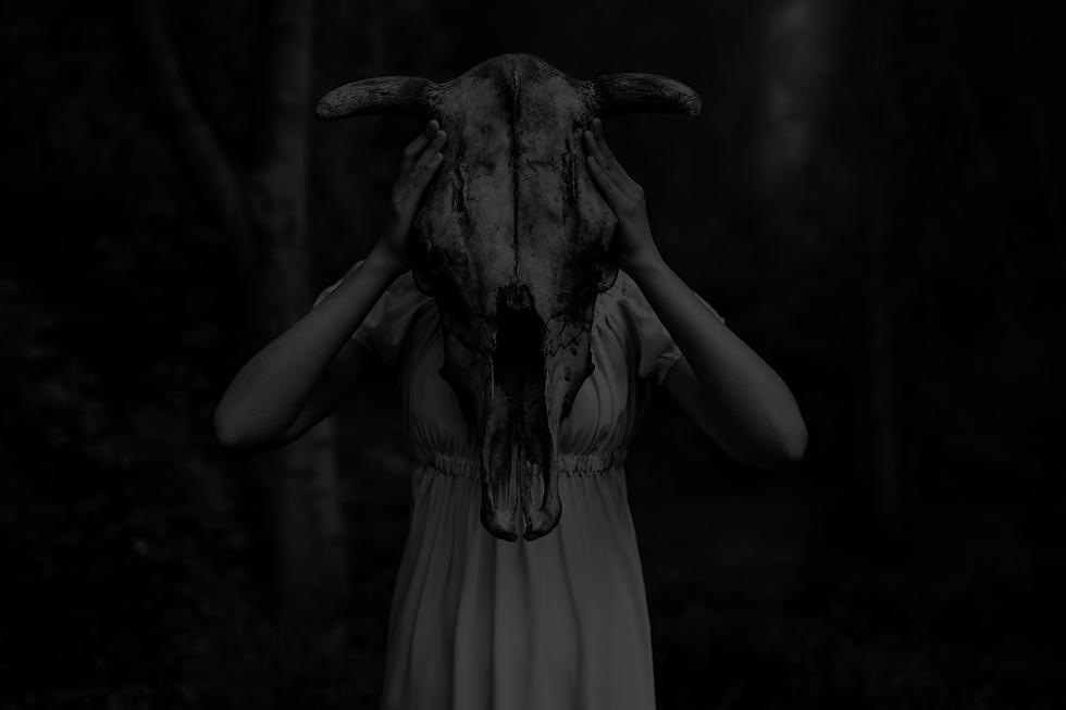 skull_gal.png