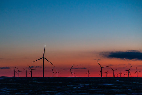 Colorado Windmills