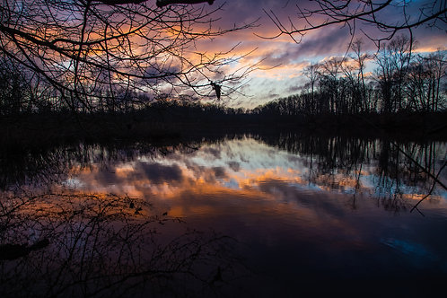 sunset, pond, reflection, Delaware, water