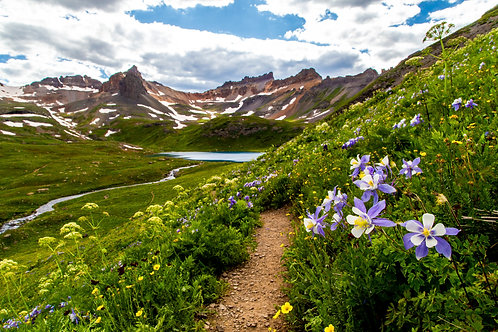 flowers, landscape, columbines, ice lake, Colorado, San Juan mountains, mountain, Rocky Mountains