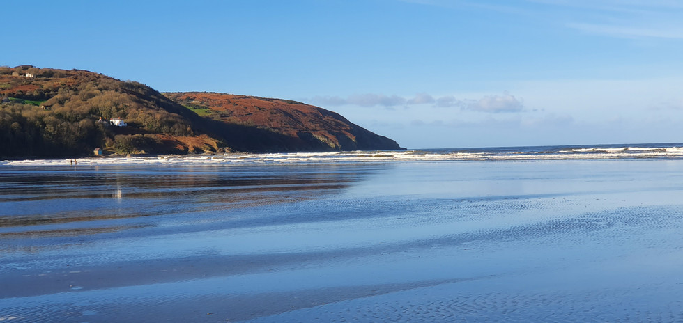 Poppit Sands - perfect for dogs