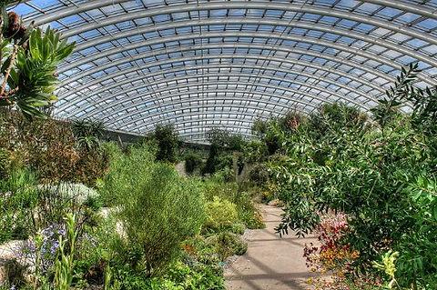 bot gardens.jpg