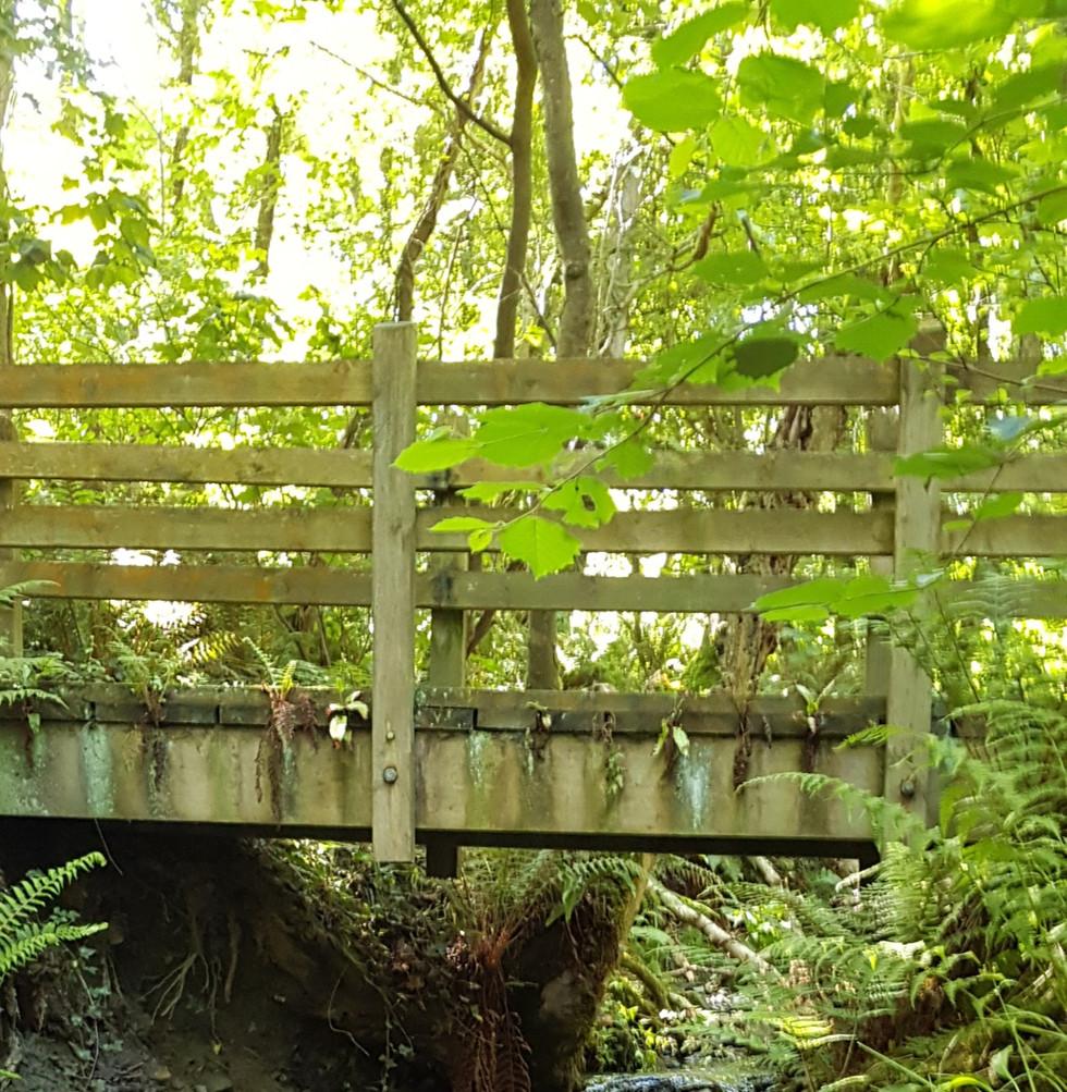Waterfall bridge walk to Cwm Silio beach