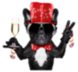 Dog with Red Hat2.png