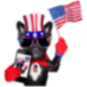 4th of July Dog2.png