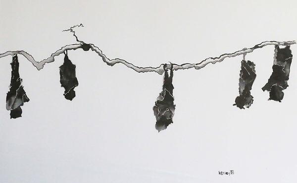 Five bats hanging Compressed.jpg