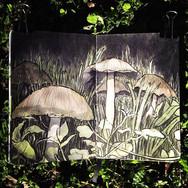 slefever-sketchbook-mushrooms.jpg