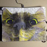 slefever-sketchbook-jada-crazyface.jpg