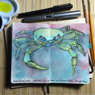 slefever-sketchbook-crab in the DR.jpg