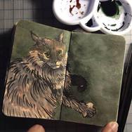 slefever-sketchbook-jada-olive.jpg