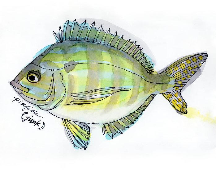 pinfish poster