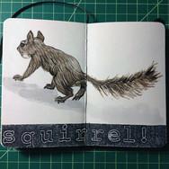 slefever-sketchbook-squirrel.jpg