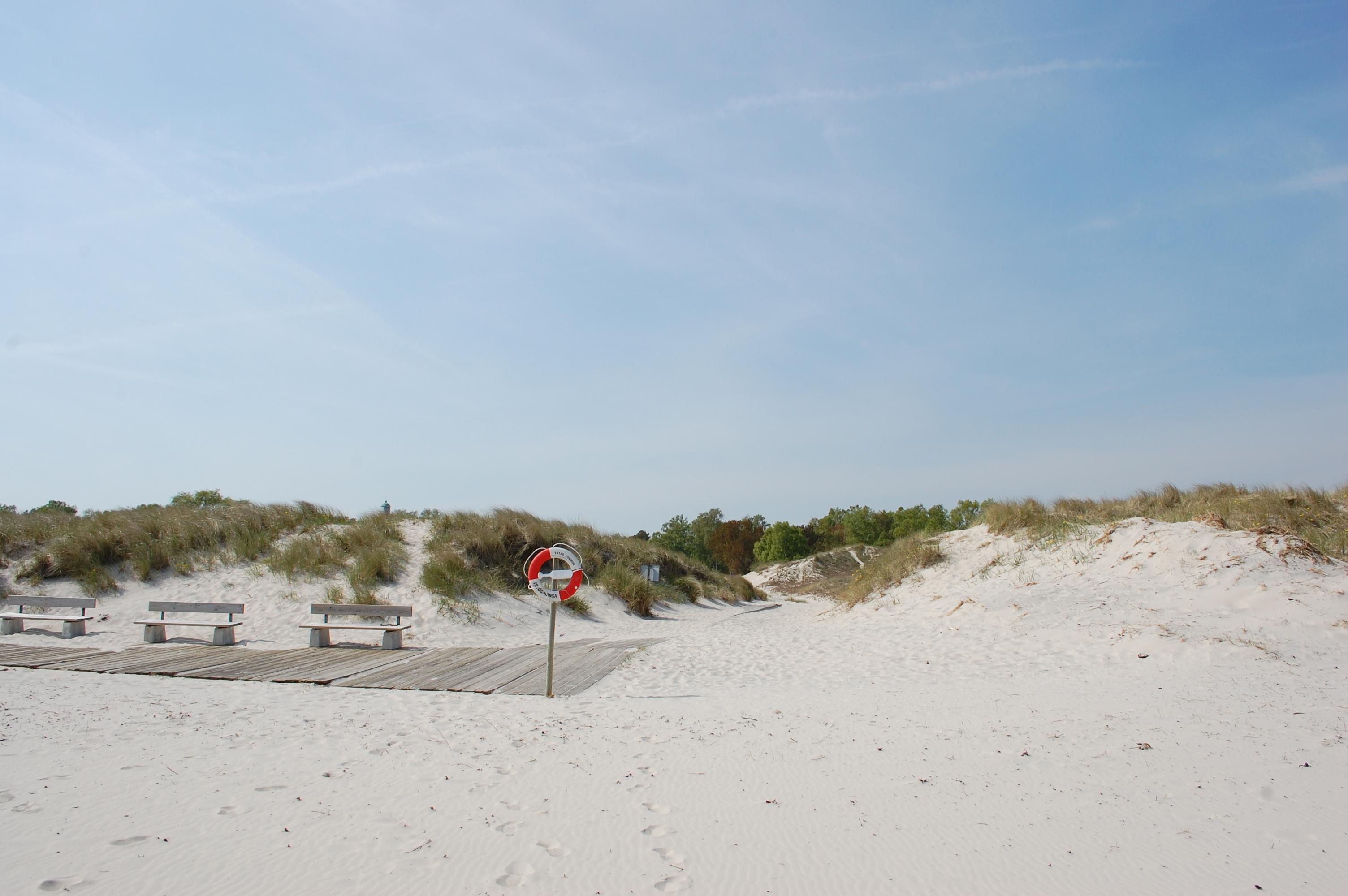 Sandhammaren_Strand_Blick_in_die_Dünen