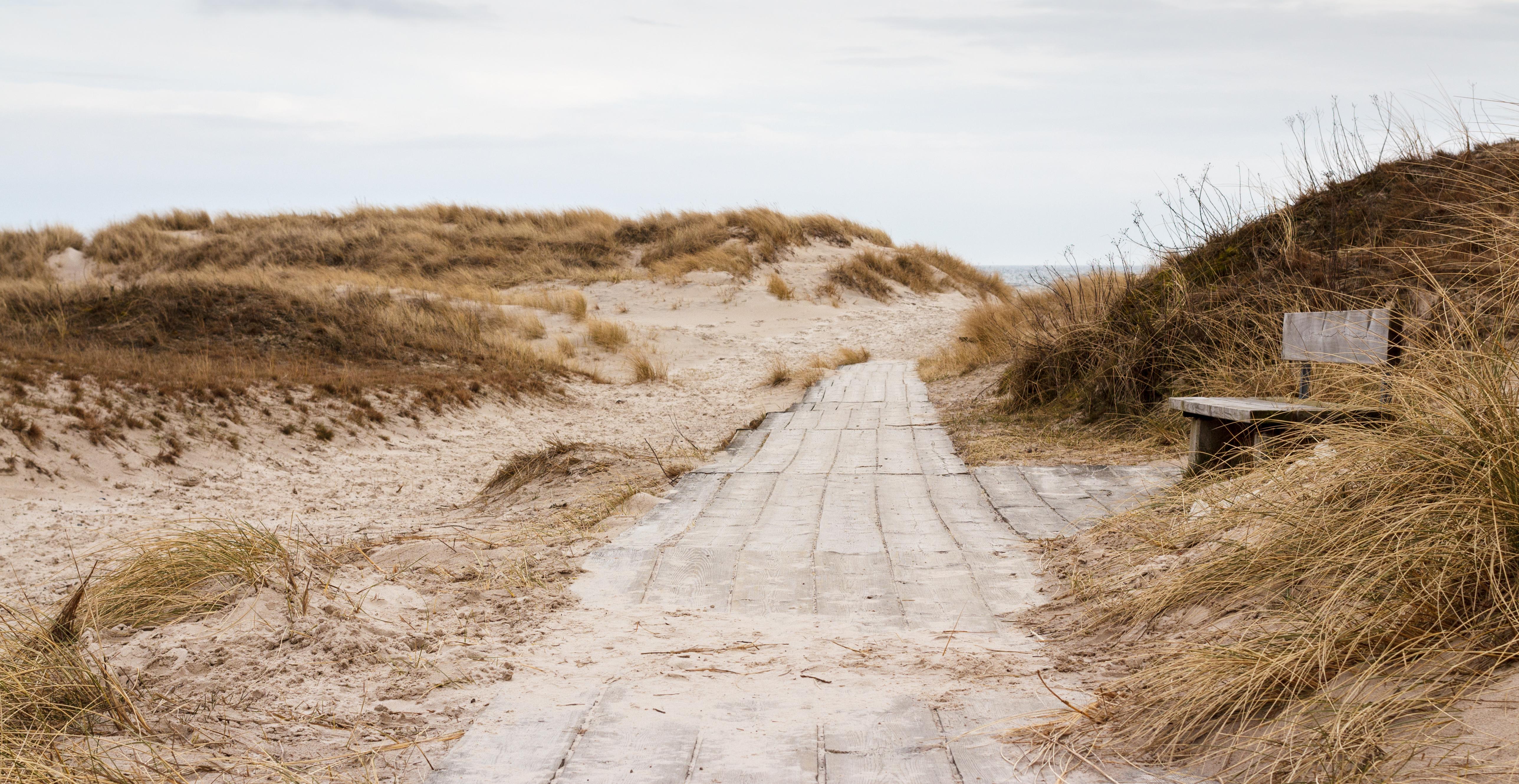 Path_to_Sandhammaren_beach_2015-03-29-47