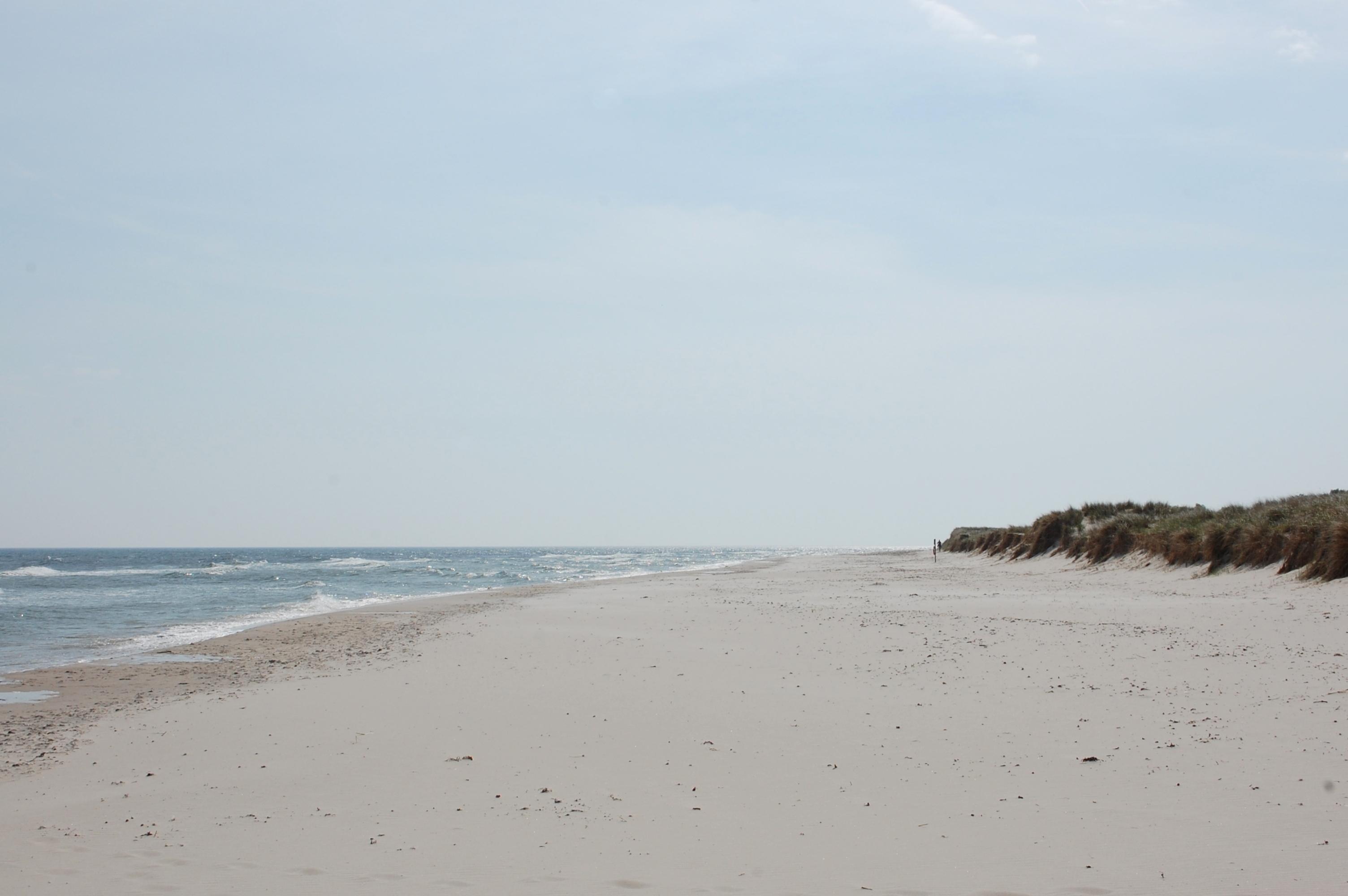Sandhammaren_Strand_Blick_nach_Süden