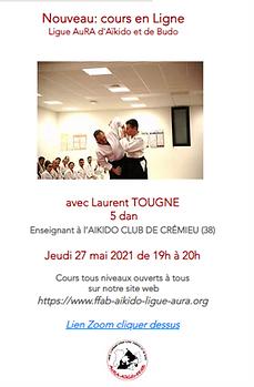 Cours en Ligne Laurent Tougne.png