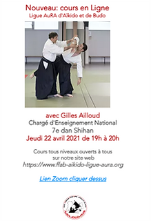 Cours en Ligne Gilles Ailloud.png
