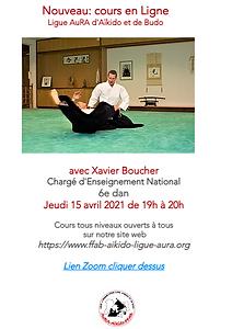 Cours en Ligne Xavier Boucher 15 avril.p