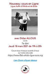 Cours en Ligne Didier Allouis 18 mars.pn