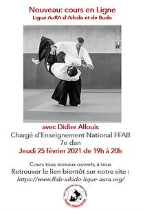 Cours en Ligne Didier Allouis.png