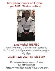 Affiche Michel Trepied.jpg