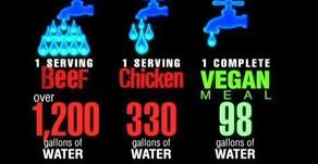 Statistics between the gallons of water consumed in serving Beef, Chicken and Vegan foods.