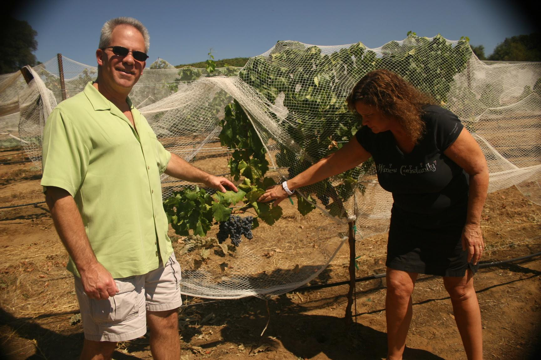 Jim and Sue, Protecting The Vines