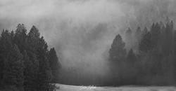 above the fog 3