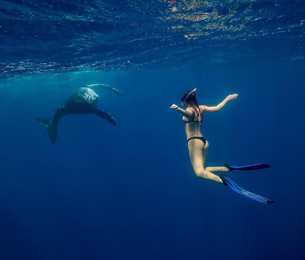 Jivana Sweeney with the Baby Whale